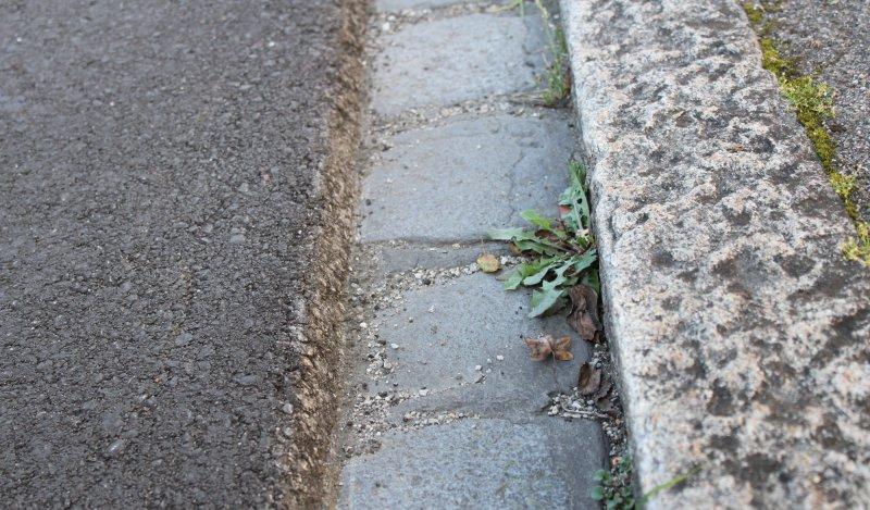 Asphalt Fußbodenplatten ~ Containerplatz wird rattensicher bodenplatten sollen die tiere