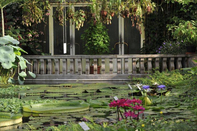 München Nymphenburg Von Der Isar An Den Amazonas Führung Im