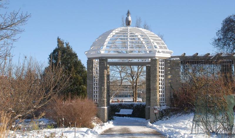 München-Nymphenburg - Streifzug durchs Freiland / Führung im Botanischen garten - 02.01.2018